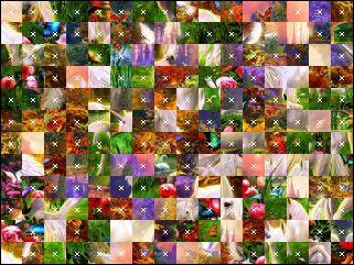 Białoruskie puzzle №15549
