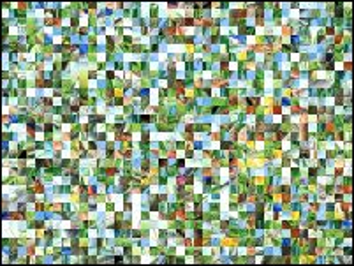Białoruskie puzzle №156014