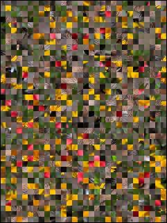 Białoruski puzzle №16687