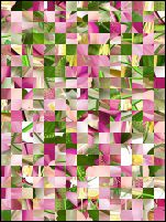 Białoruskie puzzle №201600