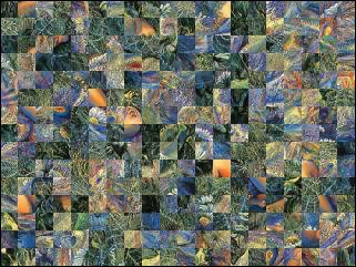 Białoruski puzzle №31973