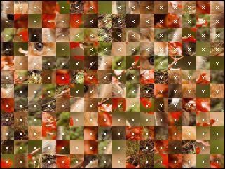 Białoruskie puzzle №35140