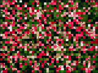 Białoruskie puzzle №39887