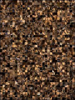 Białoruskie puzzle №92019