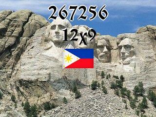 Filipiński puzzle №267256