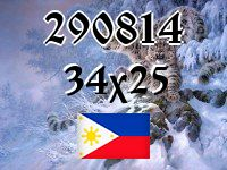 Filipiński puzzle №290814