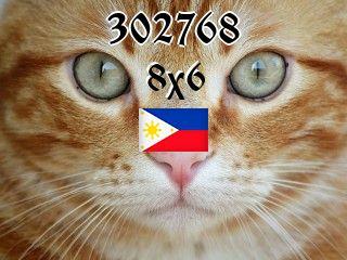 Filipiński puzzle №302768