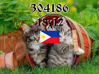 Filipiński puzzle №304186