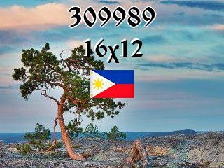 Filipiński puzzle №309989