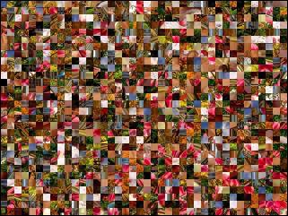 Multi-puzzle №100984