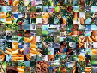 Multi-puzzle №101045