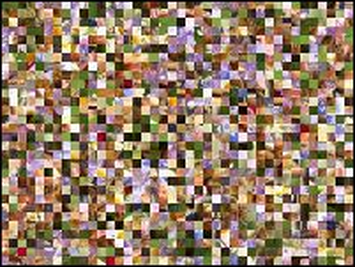 Multi-puzzle №225196
