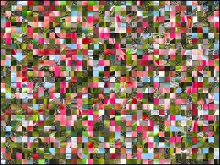 Multi-puzzle №248718