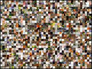 Multi-puzzle №249449
