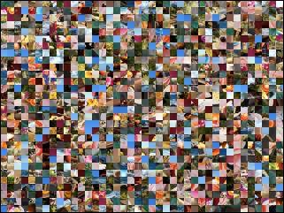 Multi-puzzle №251544