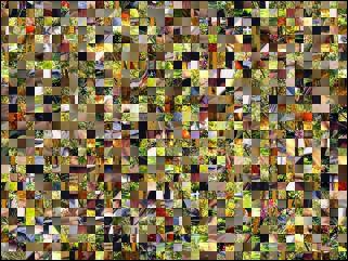 Multi-puzzle №87458