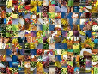 Multi-puzzle №90069