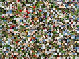 Multi-puzzle №91593