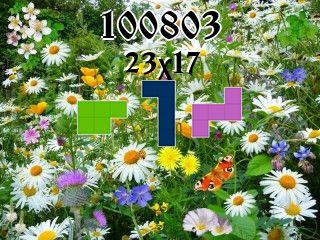 Puzzle polyomino №100803