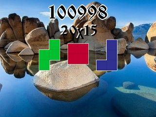 Puzzle polyomino №100998