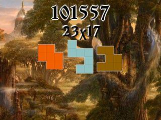 Puzzle polyomino №101557