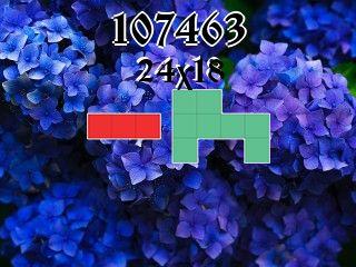 Puzzle polyomino №107463