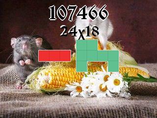 Puzzle polyomino №107466