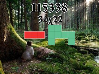 Puzzle polyomino №115338