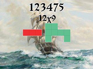 Puzzle polyomino №123475