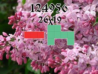 Puzzle polyomino №124956