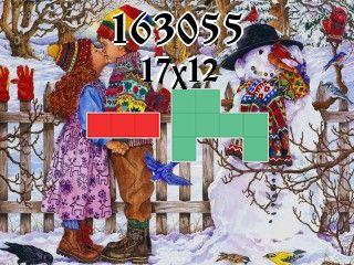 Puzzle polyomino №163055