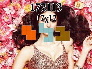 Puzzle polyomino №172113