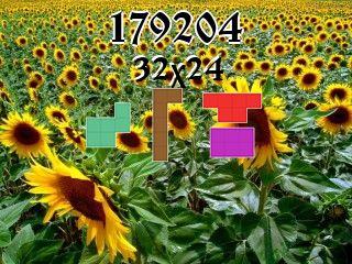 Puzzle polyomino №179204