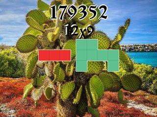 Puzzle polyomino №179352