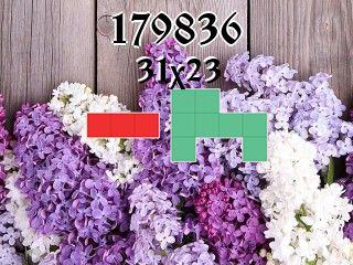 Puzzle polyomino №179836