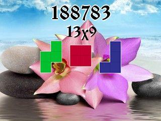 Puzzle polyomino №188783