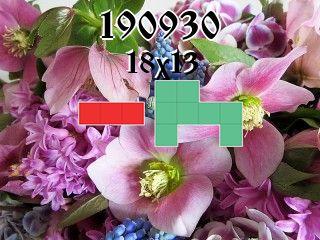 Puzzle polyomino №190930