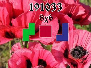 Puzzle polyomino №191033