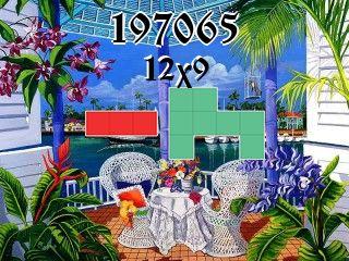 Puzzle polyomino №197065