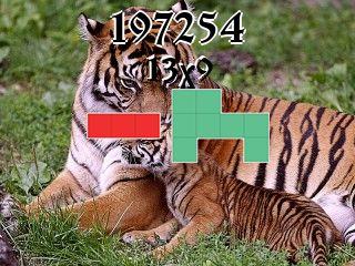 Puzzle polyomino №197254