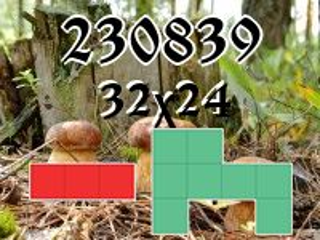Puzzle polyomino №230839