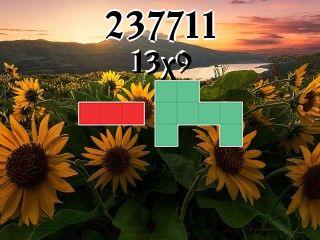 Puzzle polyomino №237711