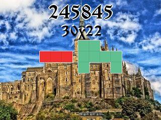 Puzzle polyomino №245845