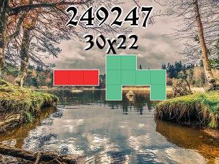 Puzzle polyomino №249247