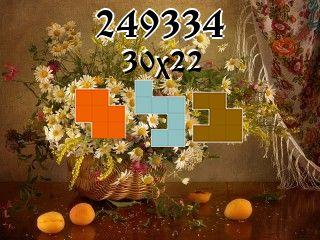 Puzzle polyomino №249334