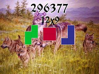 Puzzle polyomino №296377