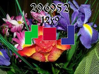 Puzzle polyomino №296952
