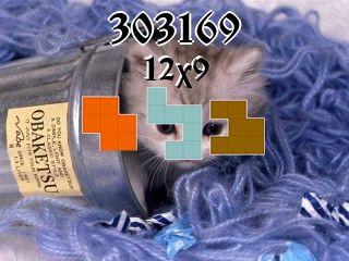 Puzzle polyomino №303169