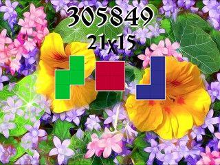 Puzzle polyomino №305849