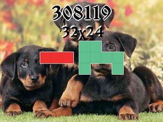Puzzle polyomino №308119